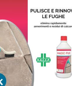 Magic Fughe